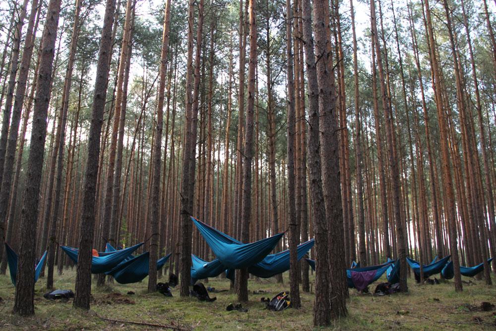 Obóz Szczepu Niesulice I Turnus 2019   FOTO II